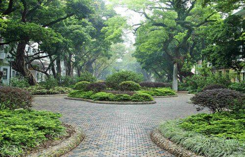 فضای سبز جزیره شامیان در گوانجو چین