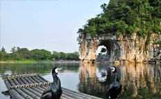 تپه خرطوم فیل از جاذبههای گردشگری شهر گویلین چین