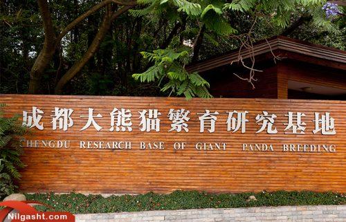 مرکز تحقیقات پانداهای غول پیکر چنگدو