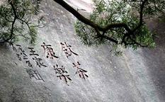 باغ گیاه شناسی شیامن و جادوی هنر خوشنویسی چینی